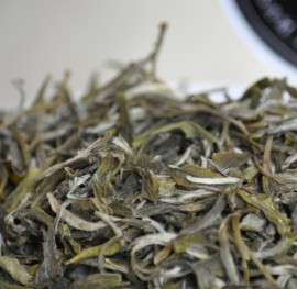 Poze White Tea Snow Buds