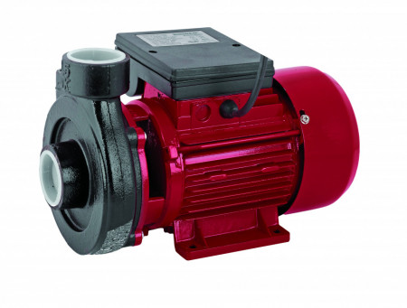 Pompa de apa centrifugala de suprafata 750W RD-1.5DK20