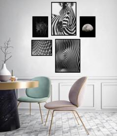 Set 5 tablouri decorative Zebra BW