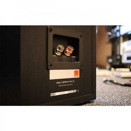 Diffusori da Pavimento Hi-Fi / Home Theatre 2 vie DALI SPEKTOR 6