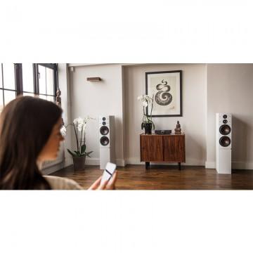 Diffusori Attivi da pavimento Hi-Fi 2,5 vie Dali CALLISTO 6 C