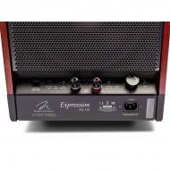Diffusori Amplificati Elettrostatici / Ibridi 3 Vie da Pavimento Hi-Fi Martin Logan Impression ESL 13A