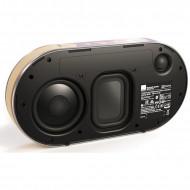 Diffusore Attivo Portatile con Batteria 2 Vie Hi-Fi Dali Opticon KATCH