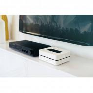 Streamer di Rete, CD Ripper con Hard Disk & Sistema Multiroom Hi-Fi Bluesound VAULT 2i