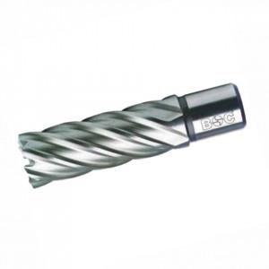 "Carote HSS (Co8%) cu prindere Weldon (3/4"") - lungime 50mm"