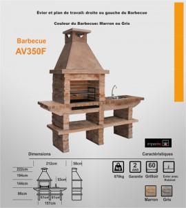 Barbecue Exterieur avec évier AV350F