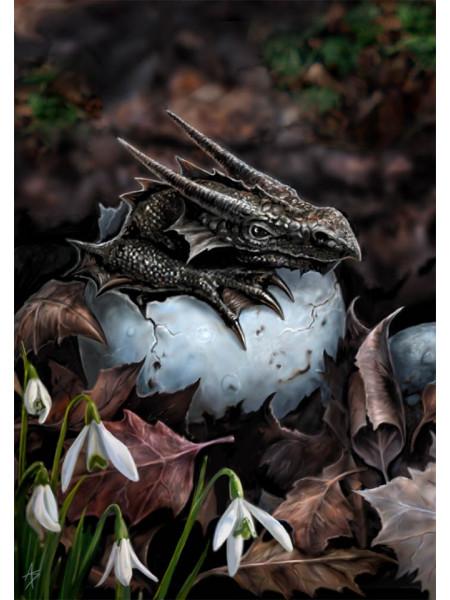 Felicitare mică Pui de dragon ieșind din ou