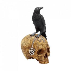 Cutie bijuterii corb pe craniu Salems Familiar 27cm