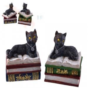 Cutie bijuterii pisicuta neagra pe carti Spellbound 13 cm