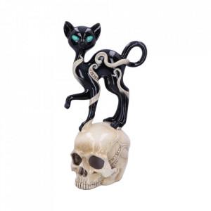 Statueta pisica pe craniu Feline Fate