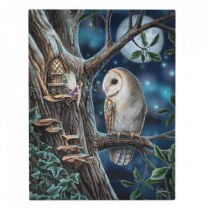 Tablou canvas Povesti 19x25cm - Lisa Parker