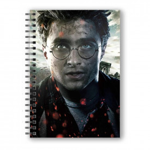 Agenda/Jurnal coperta 3D licenta Harry Potter - Harry Potter
