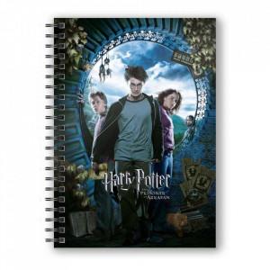 Agenda/Jurnal coperta 3D licenta Harry Potter - Prizonierul din Azkaban