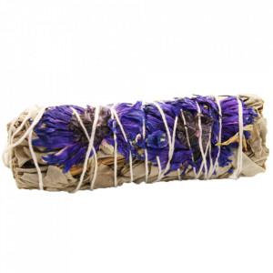 Manunchi de Salvie Alba pentru fumigatii - Purple Daze 10cm
