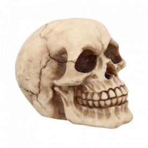 Statueta craniu Joker 12 cm