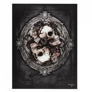 Tablou canvas craniu Dioscuri 25x19cm