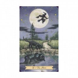 Cărți tarot Vrajitoare de zi cu zi