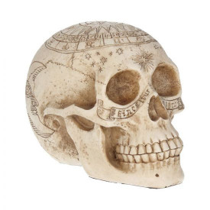 Statuetă Craniu astrologic