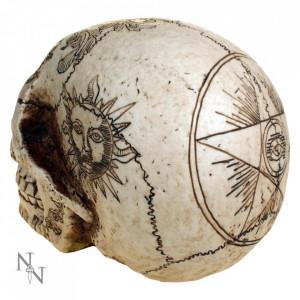 Statueta craniu Spirite 20 cm