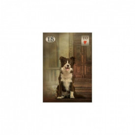 Carti Oracol Thelema Lenormand