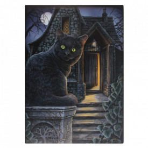 Tablou canvas pisica Casa Vrajitoarei 19x25cm - Lisa Parker