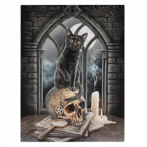 Tablou canvas pisica pe craniu, Salem 19x25cm - Lisa Parker