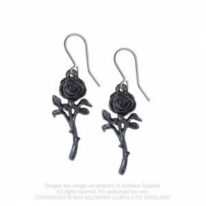 Cercei Lungi Iubirea Trandafirului Negru