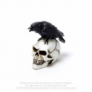 Mini statueta corb pe craniu