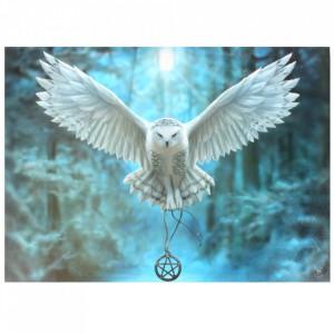 Tablou canvas, Awake your Magic, 50x70cm - Anne Stokes
