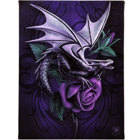 Tablou Canvas Dragon beauty