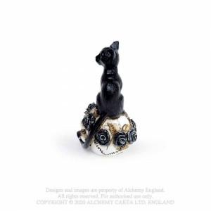 Mini statueta pisica pe craniu