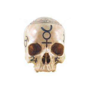 Statueta craniu The Necromancer 18cm