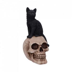 Statueta pisica neagra Familiar Fate 24.3cm