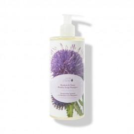Sampon cu brusture & neem pentru un scalp sanatos - 390 ml