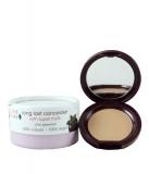 Corector cu pigmenti din fructe rezistent la transfer - Cream (2)