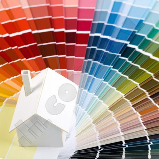 Paletar culori vopsea lavabila