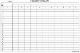 Poze Document cumulativ A3