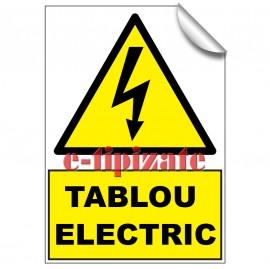 Poze Tablou Electric