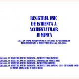 Registrul unic de evidenta a accidentatilor in munca - COMPLET