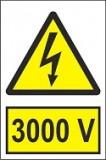 """Indicator """"3000 V"""" A4"""