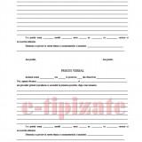 Registru Procese Verbale Predare-Primire Serviciu Inarmat - 25 file