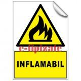 Inflamabil