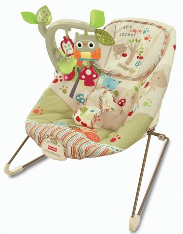 Poze Balansoar Comfy Time Bouncer Fisher Price