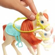 Barbie si Chelsea Ferma Cailor
