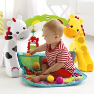 CENTRU DE ACTIVITATI FISHER PRICE NEWBORN TODDLER