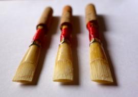 Handmade « Solist » reed