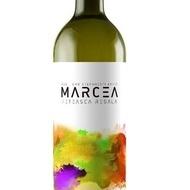 Vin alb sec Marcea Feteasca Regala 13 % - 750 ml