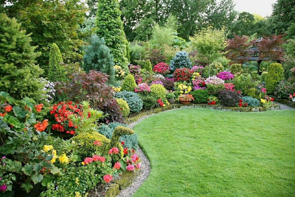 Udarea corectă a plantelor pe timpul verii