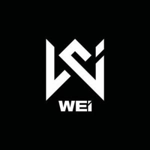 Wei Wei Fashion