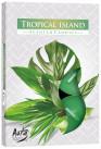 Poze Lumânare pastilă Tropical Island P15-274